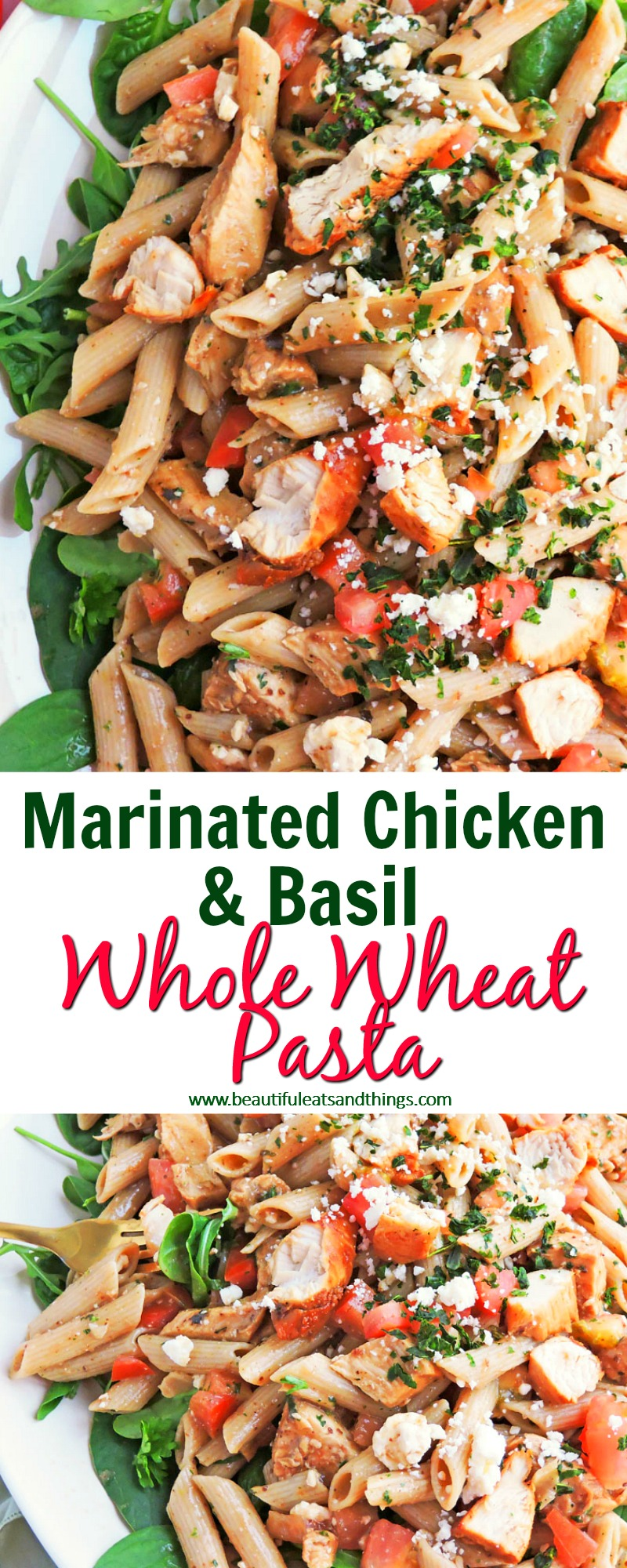 Marinated Chicken & Basil Whole Wheat Greek Pasta6